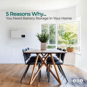 5 Reasons to choose Battery Storage - ESE Group